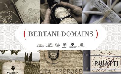 Bertani domains-CANTINE