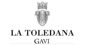 TOLEDANA GAVI