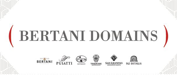 logo bertani domains