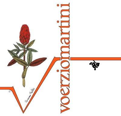 logo-voerzio-martini